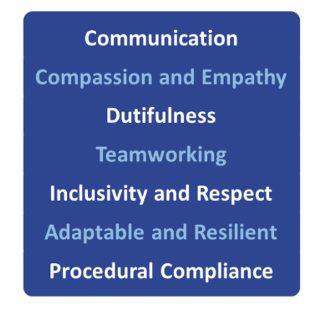 7 qualities of care